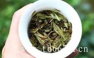 白牡丹茶的茶艺泡法,详细解说!