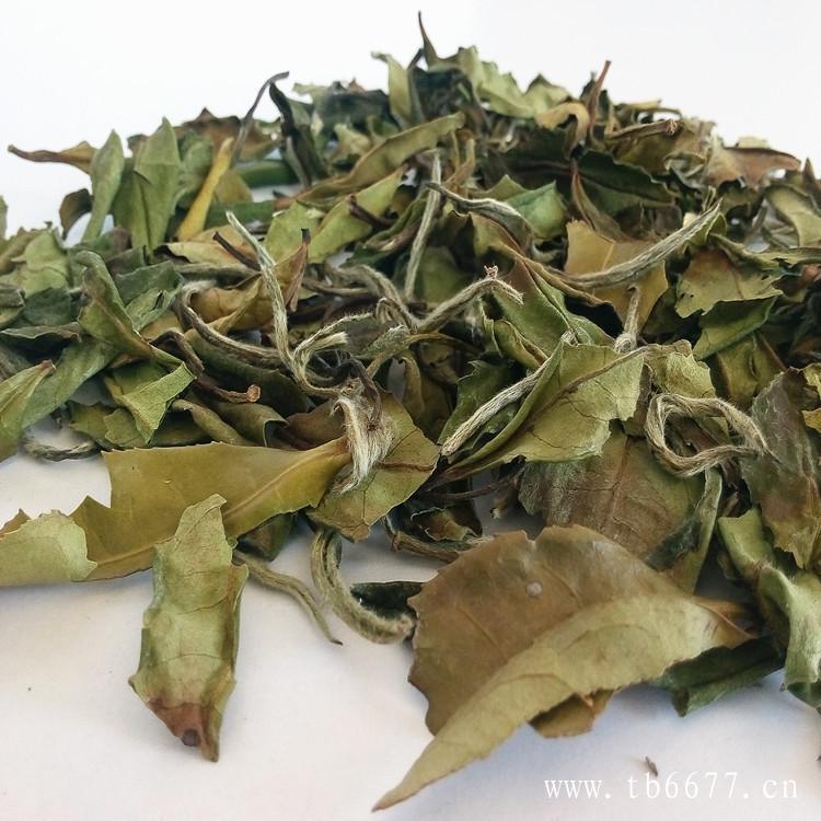 福鼎白茶枣香,是怎么形成的呢?